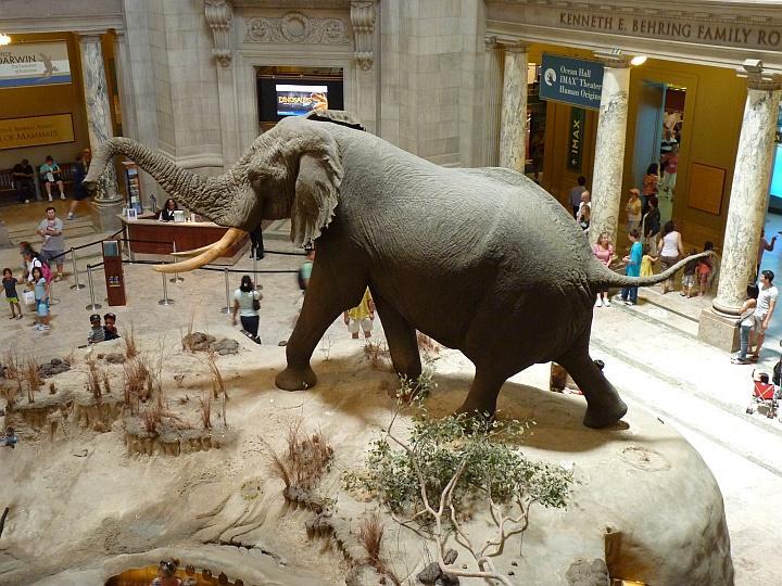 National-Historic-Museum-Washington-1-