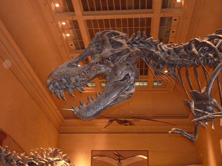 National-Historic-Museum-Washington-3