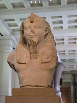 Pharao Bueste