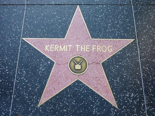 Kermit-Stern