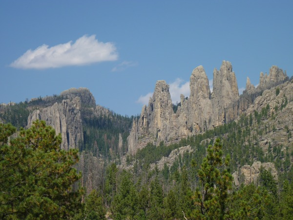 Needles-Highway-3