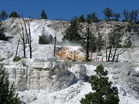 Mommoth Hot Springs im Yellowstone NP