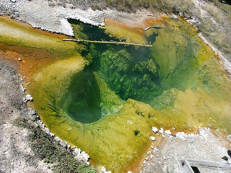 Yellowstone NP Pool