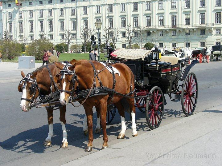 Kutsche Wien Hofburg