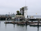 Forbes Island San Francisco