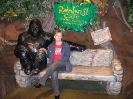 San Francisco Rainforest Cafe