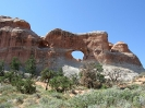 Arches NP-_2