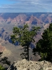 Grand Canyon NP_14