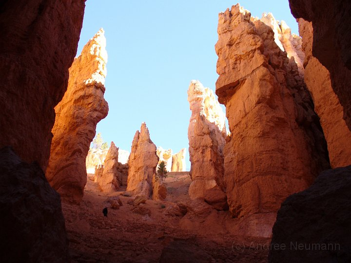 Bryce Canyon NP -_21