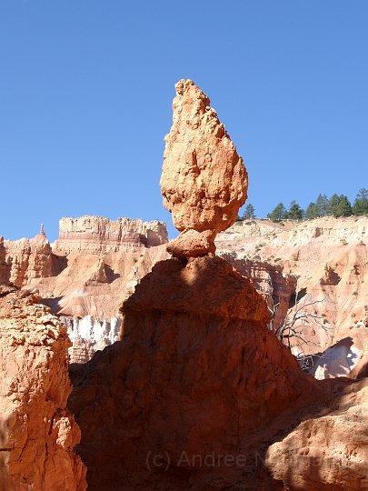 Bryce Canyon NP -_15