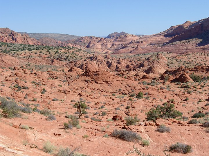 Blick in de Coyote Buttes