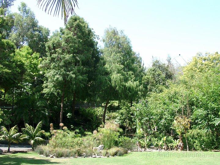 San Diego Zoo_5