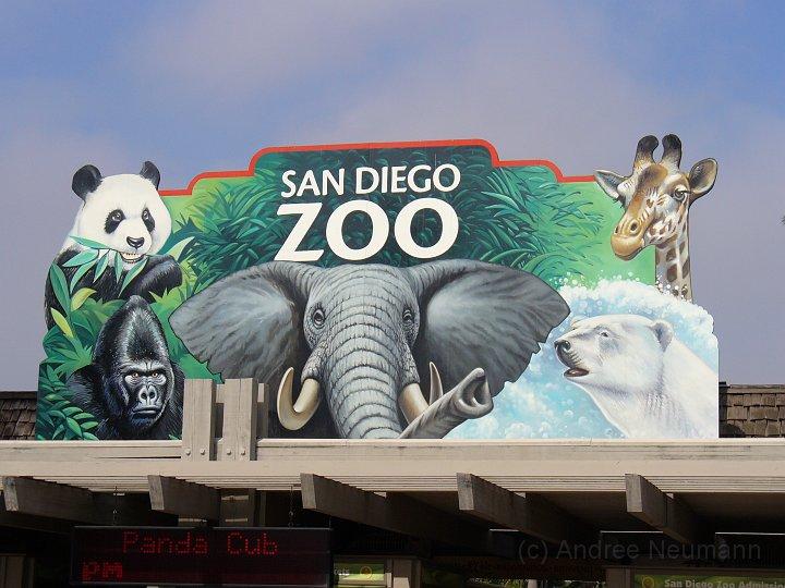 San Diego Zoo_21